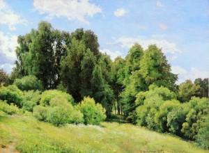 Лесная поляна Шишкин