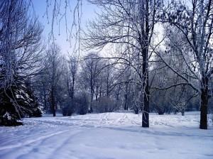 декабрь - вершина года