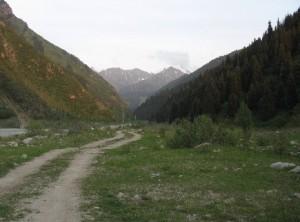 из-за горы