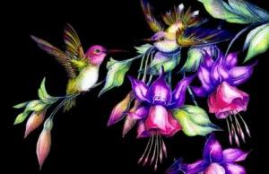 Лети, пташка-канарейка